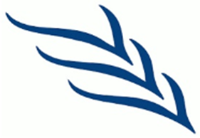 Logo del Volontariato Vincenziano
